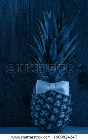 Blue pineapple with bow tie on wooden background. Healthy ftropical fruit, vegan food banner, color trends wallpaper. Minimal creative social media picture top view. Minimalism style, trendy toning.