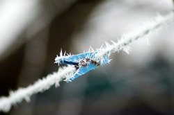 Blue plastic clothespin with frost on the rope