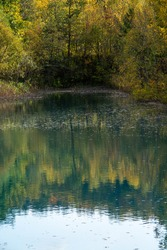Blue pond in autumn reflecting trees of yellow leaves