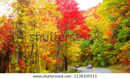 Blue Ridge Parkway during Fall Season in October  #1138109315