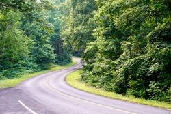 Blue Ridge Parkway winding its way through the woods of Virginia's Appalachian Mountains. Photo taken from Yankee Horse Ridge Overlook parking area near mile 34.