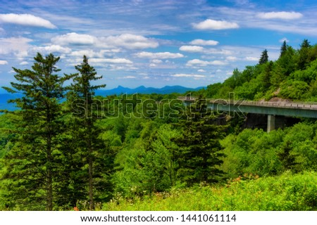 Blue Ridge Pary Way National Park's Linn Cove Viaduct, huggs this hillside providing vast vista views. #1441061114