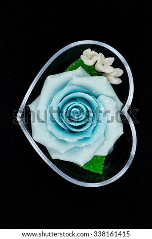 Blue   Rose Flower Isolated on White Background. Top View on Beautiful Blue  Rose Flower\ Blue   Rose Flower Isolated on White Background. Top View on Beautiful Blue  Rose Flower