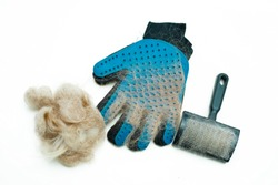 Blue rubber glove and animal brush for combing pets, cats, dogs. A clump of wool is the result of grooming. Tools for the grooming salon, or pet care at home. Flat lay, isolated. Photo