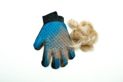 Blue rubber glove for combing hair on pets, cats, dogs. A clump of wool is the result of grooming with an animal brush. Grooming salon, or pet care at home. Flat lay, isolated. Photo