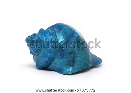 blue sea shell isolated on white background