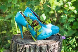 Blue second hand shoes, stilettos, high heels / upcycled into eco friendly planters / flowerbeds / flower pots. Sustainable gardening idea