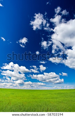blue skies with white clouds above green land vertical