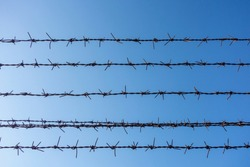 blue sky and barbed wire mesh