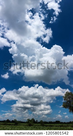 Blue sky and clouds, in a shining beautiful day. The nature is able to create wonderful pieces of pure art #1205801542