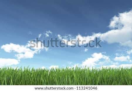 Blue sky and green grass - nature background