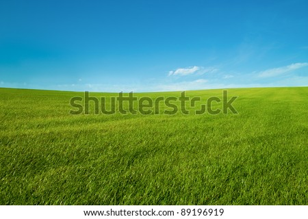 blue sky and green grass wallpaper landscape looks  like