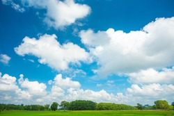 blue sky and white clouds. Freshness of the new day. Bright blue background. Relaxing feeling like being in the sky. Green fields and clear skies.