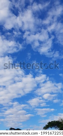 Blue sky and white clouds. Today is fresh and bright.