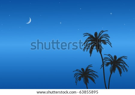 blue sky at night on the beach