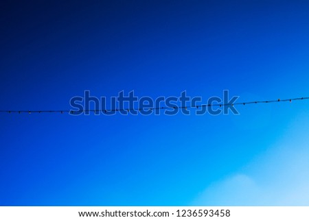 Blue sky long electric garland for lighting with white light bulbs against the background of a blue clear sky #1236593458