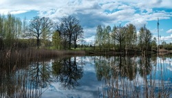 blue sky reflections in clear water pond with spring trees and mirror surface