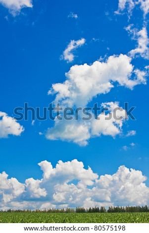 Blue sky with cumulus clouds over green field