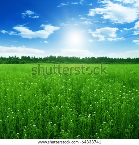 Blue sky with sun and green field.
