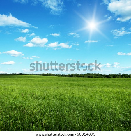 Blue sky with sun and summer field. - stock photo