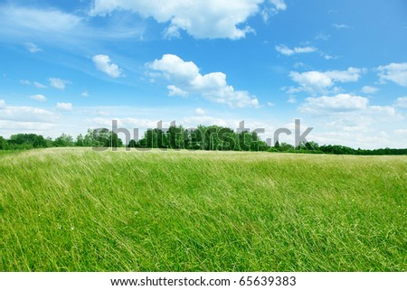 Blue sky with white clouds and field of grass.