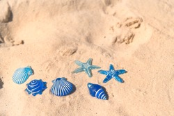 Blue Star fishes in sand at beach