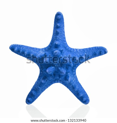 Blue starfish isolated on white background