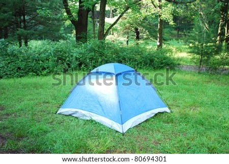 Blue tent in a forest