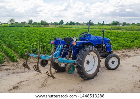 Blue tractor with a cultivator plow and the green field of the Bulgarian pepper plantation on the background. Farming, agriculture. Agricultural machinery and equipment, work on the farm. harvesting #1448513288