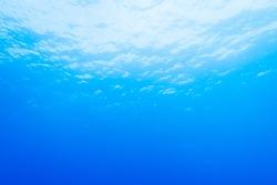 blue underwater background in the sea