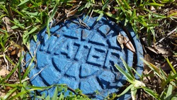 Blue Water Meter Manhole Cover in Grass