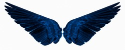 blue wings isolated on a white