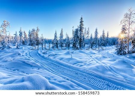 Blue winter landscape - Shutterstock ID 158459873
