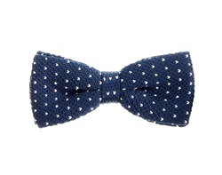 blue with white dots necktie