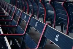 Blue Wooden Stadium Seats
