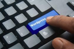 blue Wordpress keyboard button