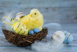 Blue, yellow, whiteeggs in the nest and yellow chicks on a blue wooden background. The minimal concept. An Easter card with a copy of the place for the text.
