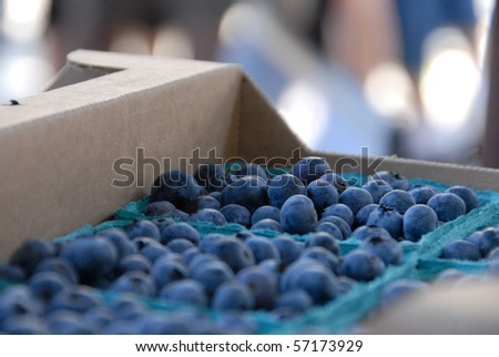 Blueberries at the Saturday Market in Boise, Idaho