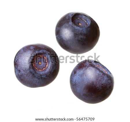 Blueberries on a white background