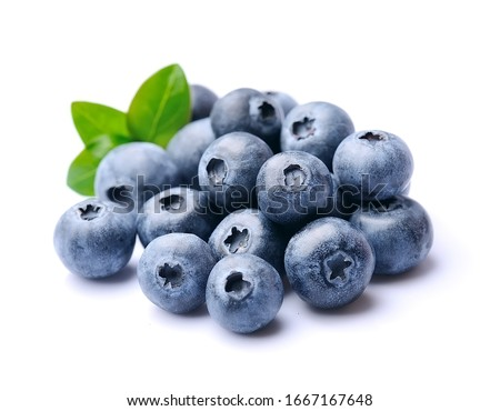 Blueberries with leaves isolated on white backgrounds. Photo stock ©