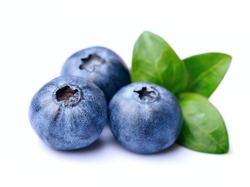 Blueberries with leaves on white backgrounds.