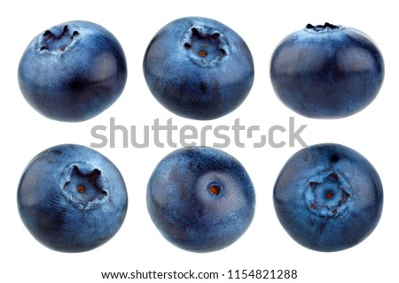 Blueberry berries isolated on white background. Collection.