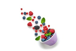 Blueberry, blackberry, raspberry, redcurrant flying in air, isolated on white. Fresh blueberry, red berries falling into bowl. Colorful berry fly, creative minimal levitation concept.