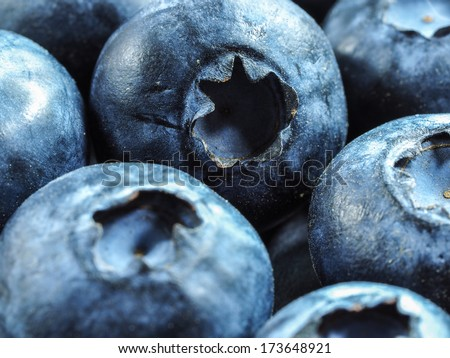 Blueberry blueberries background, close-up