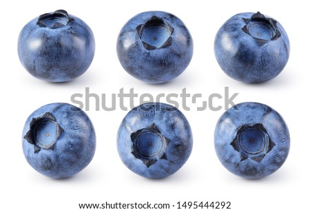 Blueberry. Blueberries set isolated on white background. Bilberry. Clipping path.