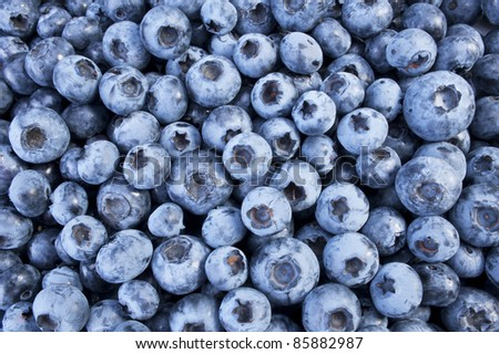 Blueberry - fresh blueberries on the plate