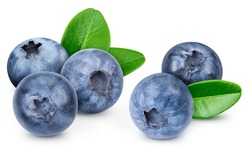 Blueberry isolated on white background. Blueberry macro studio photo. Blueberry with leaves. With clipping path