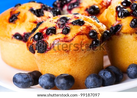 Blueberry muffin with fresh berries