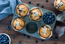 Blueberry muffins in a muffin tin. Baked goods concept.