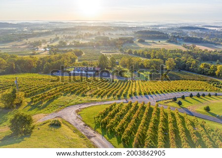 Bluemont Vineyards, located in Loudoun County, Virginia Foto stock ©